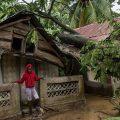 typhons